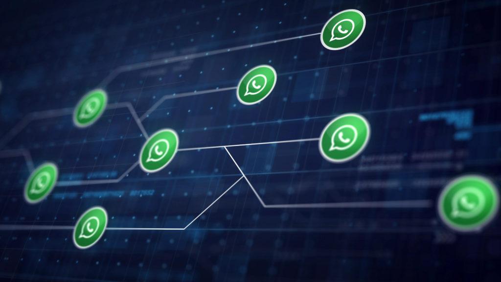 Whatsapp Connection